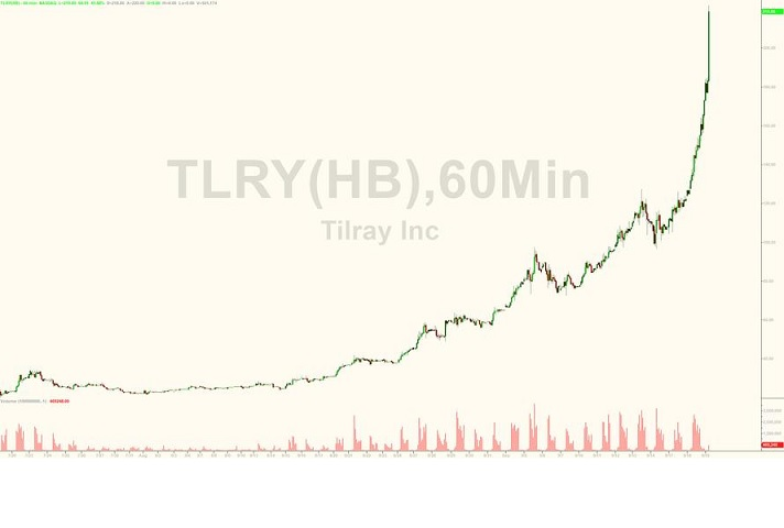 dry herb tilray stock