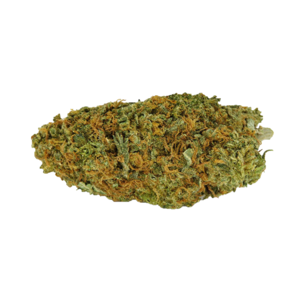 Buy Scout Master weed online