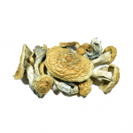 Wholesale pricing on Dried Mushrooms