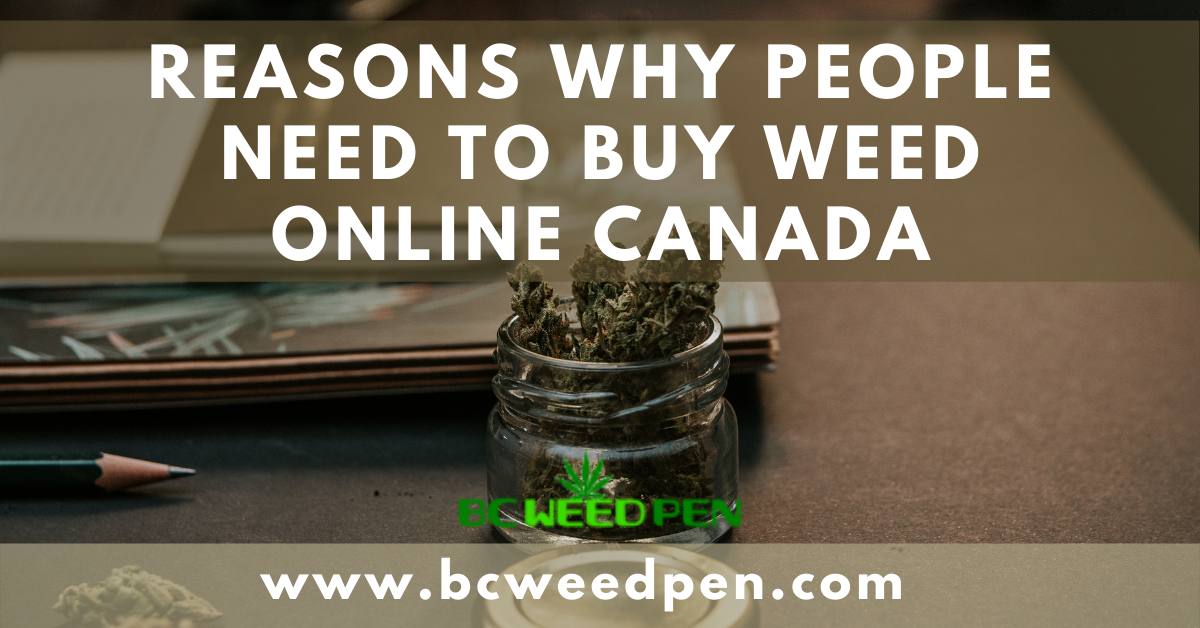 Reasons Why People Need To Buy Weed Online Canada