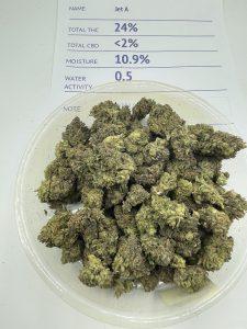 Jet Fuel Weed Strain
