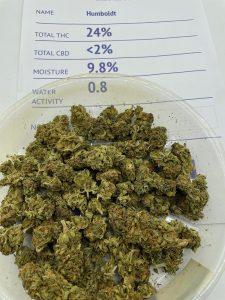 Humboldt Weed Strain
